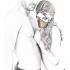 Збруя на голову срібляста  - сріблястий – фото 3