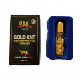Золотой муравей – фото